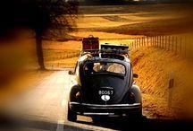 Autumn Black Road