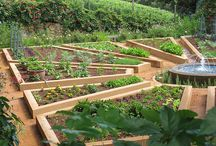 Potagers / Inspiration for my kitchen garden!