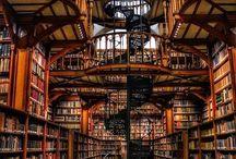 I love biblioteche