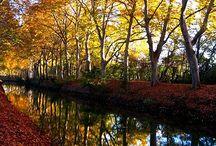 Le Canal du Midi Escapade à pied ou à vélo et paysages