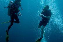 diving?