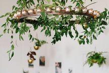foliage / by Mallory Joyce Design