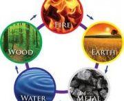 Healing, Health, Wellness / Health for Mind, Body and, Spirit
