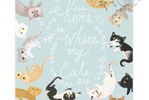 Cats 'n Kittens / Adorbz