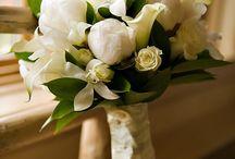 Wedding / by Amandine Amoureux