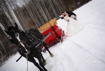 Winter Sleigh Rides at Mountain Springs Lodge / Horse drawn sleighs make a grand entrance or exit at our weddings or are just a fun event for your wedding party and guests.