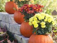 Fall Ideas / by Renee Melton