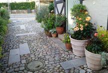 Planter i krukker / En god krukkeoplevelse kræver smukke planter og smukke krukker