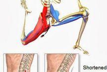 páteř-vytřelující bolest do nohy