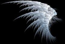 wings / angels, fairy , unicorns,too