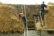 Thatch - Thatched roof