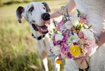 Florals / Wedding floral inspiration (From outside of A Colorado Courtship Blog)