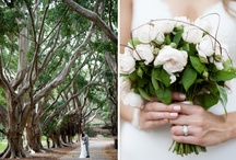 photoshoot ideas / inspiration for the engagement and wedding photos