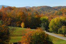 Tennessee Roadtrip