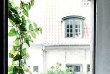 verde y plantas