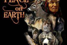 The Indians / De Indianen
