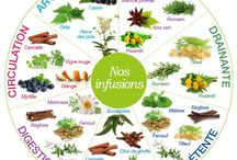 Les infusions
