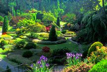 Famous Gardens / Famous Gardens around the World