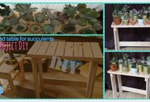 Living room ideas / Diy stand table for succulent, plants and displays,idea good for small living room.