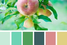 Colors / by Noel Johnson