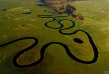 Rivers and Wetlands / The transition of water and land. A collection of images of these dynamic systems from across the world. / by Frank Nelson