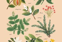 herbal print