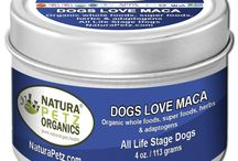 Dogs Love Maca - Nutritional Health Topper / Dogs Love Maca is a highly specialized adaptogen plant, which helps identify metabolic, environmental, emotional and oxidative stress in your dog & is naturally coded to help restore whole body balance.   May help nourish gland health, support proper hormonal response throughout the body and counteracts adrenal fatigue.   It helps regulate stress response and helps support proper metabolic rates, along with cognitive, cardiovascular and reproductive support.