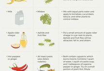 garden remedies