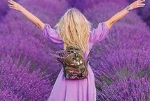 For the LOVE of Lavander / Always make people better,happier and more helpful,they are food and medicine for Soul