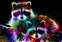 kleur dieren