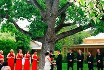 Wedding Venues / South Australian Wedding Venues