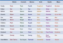 Cornish Language and Dialect / Words from the Cornish Language (Kernewick) and colloquial expressions (mainly of English origin) that are used by Cornish folk.