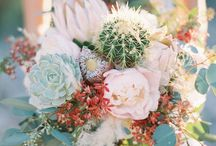 Concepts: Sweet Cactus Love / Sweet and simple rustic desert feel in colors of the desert - light blush pink, cactus green and native teal/turquoise  Alexandra & Mitchell