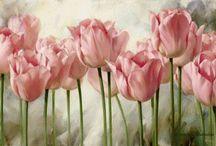 картины цветы