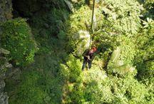 Caves, PHONG NHA- KE BANG, Vietnam / 39 caves discovered at Phong Nha - Ke Bang. Read more: http://goo.gl/sHcN7s