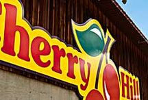 Cherry Hill / RVing tips for successful family fun at Cherry Hill