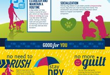 NAPPS Designs / Check out these various NAPPS designs: Helpful information for pet parents and pet sitters!