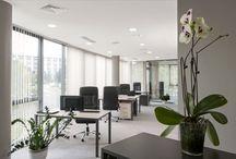 Black Peak Capital office