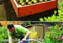 00 Raised Beds