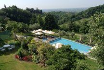 Pool / Infinity Pool at Villa Cipriani