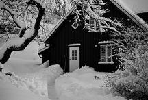 To Love Winter / by Paula Tedsen