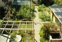 permaculture / les principes de base de la permaculture et les appliquer au jardin