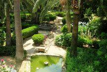 Son Julia Boutique Hotel / Son Julia Boutique Hotel je ideálnym miestom na oddych v zrenovovanom zámku z 15. storočia v srdci nádhernej prírody Malorky. V tomto malom hoteli zažijete tie najromantickejšie chvíle pri prechádzkach v 300 rokov starej záhrade s terasami v tieni pomarančovníkov. Link: http://www.holamallorca.net/ubytovanie-mallorca/son-julia-boutique-hotel