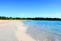 Playas y Calas de Menorca / En Menorca encontramos playas con servicios, arenales vírgenes y recónditas calas. Uno de los mayores atractivos de la isla es, sin duda, sus playas y calas. Las hay para todos los gustos, desde playas con servicios turísticos hasta recónditas e insospechadas calas vírgenes, en algunas de ellas puede practicarse el nudismo. Aunque todas tienen una cosa en común: sus cristalinas aguas. Existe una gran diferencia geográfica en la isla entre las playas del norte y las del sur.