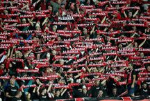 Calcio Albanese, Albania, Bergamo, euro 2016, Nazionale Albanese, Ucraina