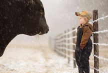 Farm Boy / The FARM side of life