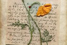 Old letters &  Postcards