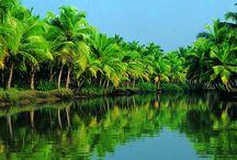 Kerala Delights - 8 Nights & 9 Days Tour Packages / Get best deals on 8 Nights & 9 Days Tour Packages. Destinations :  Marari , Thekkady , Munnar , Kumarakom , Cochin ,  Alappuzha Houseboat, Kanyakumari, Kovalam