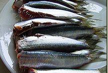 ψάρια  θαλασσινά