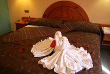 Nuestro Hotel / Descubre nuestras habitaciones a unos precios increíbles.
